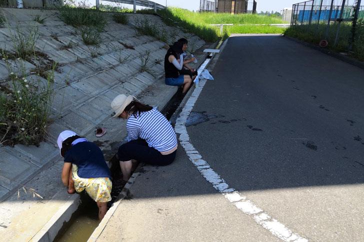 2019.05.26 オーナー向け田植えイベント